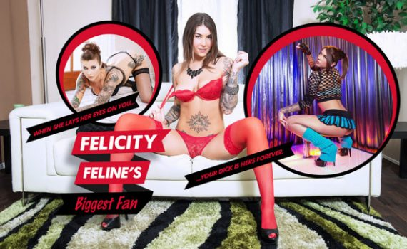 Felicity Feline's Biggest Fan