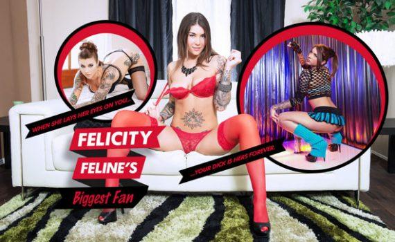 Felicity Feline's Biggest Fan